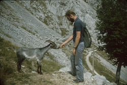 Bill and goat